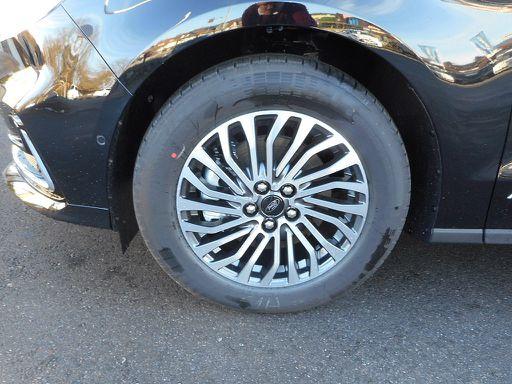 Galaxy  2,0 EcoBlue SCR AWD Titanium Aut., Titanium, 190 PS, 5 Türen, Automatik